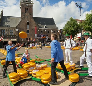 Alkmaar cheese trading started in 1365